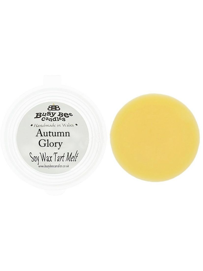 Busy Bee Candles Wax Tarts vonný vosk Autumn Glory